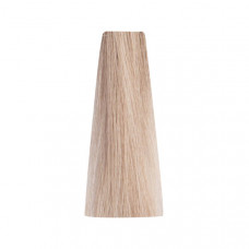 Bionic ASH 10/1 Blonde Platinum Ash 100ml/Permanentní barvy/Popelavé