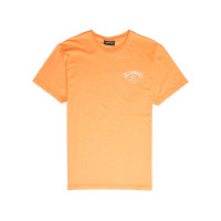 Billabong GET BACK CANTALOUPE dětské tričko s krátkým rukávem - 12