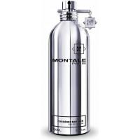 Montale Fougere Marine parfémovaná voda Pro muže 100ml