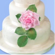 Patchwork Cutters - Růže velkokvětá (Grandiflora Rose)