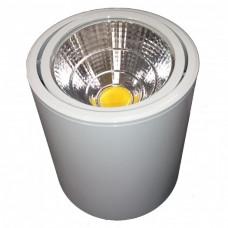 Esyst s.r.o. LED stropní svítidlo, WHITE, 10 W, teplá bílá