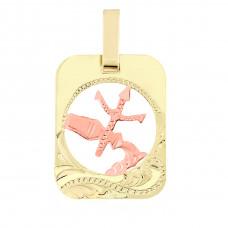 Zlato Zlatý přívěsek znamení zvěrokruhu 3220019 Znamení zvěrokruhu: Vodnář