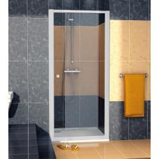 SanSwiss ECOP 1000 01 07 Jednokřídlé dveře 100 cm, matný elox/sklo
