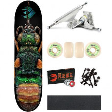 Skate komplet POWELL PERALTA Flight Biss • Ruby Tailed Wasp • 8.5